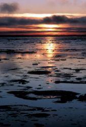 Tundra Sunset Photo
