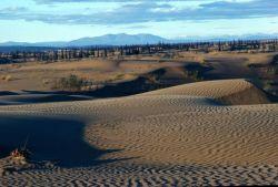 Nogahabara Sand Dunes Photo