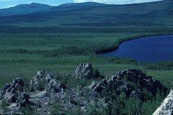 Sithylemenkat Lake Area Near Bettles Photo