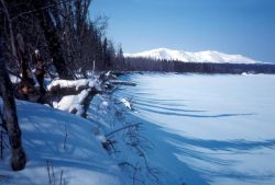 Koyukuk River in Winter Photo
