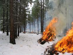 Pile burning at Bear Valley NWR. Photo