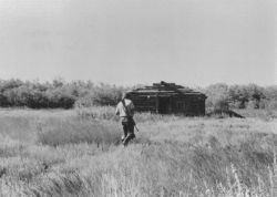 Yukon Flats Cabin Photo