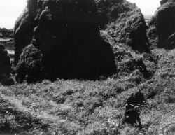 Servicemen Hiking Through Brush on Attu Island Photo
