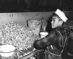 Boy Working in Fish House, Petersburg Photo
