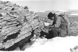 Outcrop of Paleozoic Limestone Photo