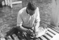 Collecting Salmon Otoliths, Karluk River Weir Photo