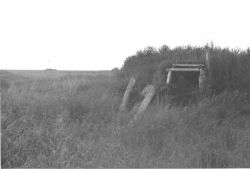 Sod House Remains on Tundra Photo
