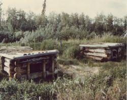 Dog Kennels, Swede Boy's Camp Photo