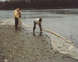 Fish Net on Hodzana River Photo
