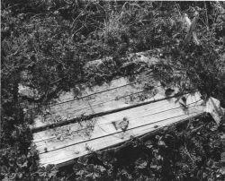 Coffin at Mountain Village, Yukon Delta Photo
