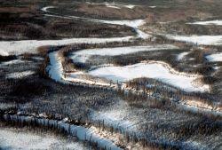 Koyukuk River in Winter Photo