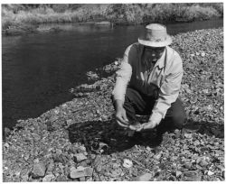 Bob Boravika at Prospect Creek Photo
