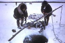 Subsistence Ice Fishing Photo