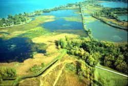 Navarre Marsh Photo