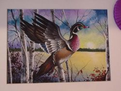 2002 Duck Stamp Painting Photo