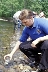 FWS employee releases Atlantic Salmon fry Photo