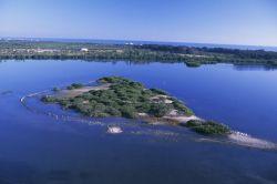 Aerial of Pelican Island NWR Photo
