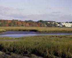 Rachel Carson National Wildlife Refuge, Maine Photo