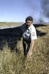 Prescribed Burn to Improve Habitat Photo
