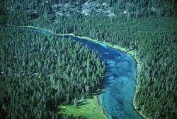 Spring Creek, Oregon Photo