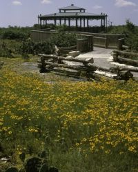 Balcones Canyonlands National Wildlife Refuge Photo