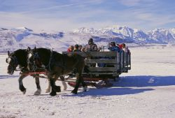 Visitors on Sleigh Ride at National Elk Refuge Photo