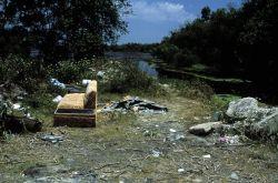 Public Dumping Photo