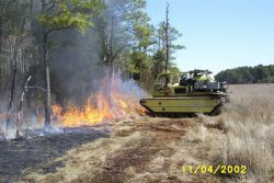 Prescribed Burn at Chesapeake Marshlands National Wildlife Refuge Complex Photo