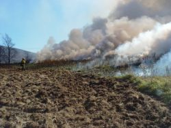 Prescribed burn at Canaan Valley National Wildlife Refuge Photo