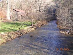 Blue shiner habitat/stream, Georgia Photo