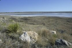 Muleshoe National Wildlife Refuge Photo