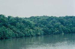 WO372 Neuse River, North Carolina Photo