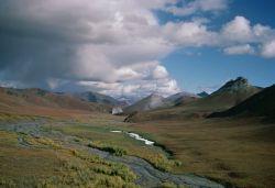 WO5176 Arctic NWR Photo