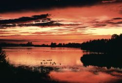 WO1800 Sunset, Seney NWR Photo