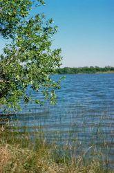 WO727 Everglades National Park, Florida Photo