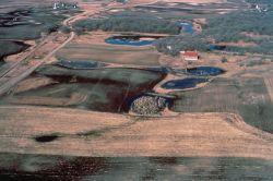 WO 935 Restored Wetlands Photo