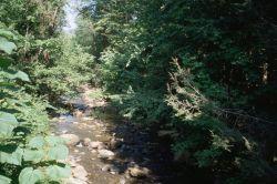 WO2405 Sampson Creek, Virginia Photo