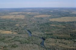 WO794 Madawaska River, Aroostook NWR Photo
