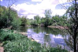 Lake at Two Ponds National Wildlife Refuge Photo