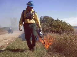 r6-nd-usr-firefighter applies fire to burn Photo