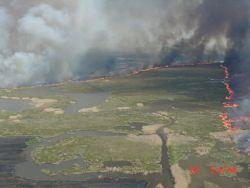 r2-tx-mcr-marsh prescribed burn Photo
