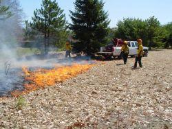 r5-me-rcr-wui prescribed fire Photo