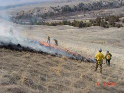r6-mt-nbr-burning plots Photo