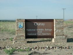 Ouray NWR and NFH entrance sign Photo
