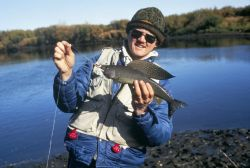 WO 4071 Fishing in Alaska ( Grayling) Photo