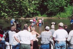 WOE178 Clinch River Mussel Gathering Photo