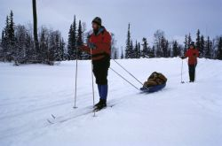WO 5498 Ski Trails, Kenai NWR Photo