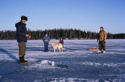 WO 5502 Ice Fishing Kenai NWR Photo
