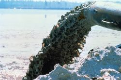 Dredge Discharge Pipe Photo