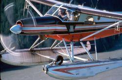 WOE152 Waterfowl Survey Plane Photo